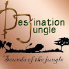 TheDestinationjungle