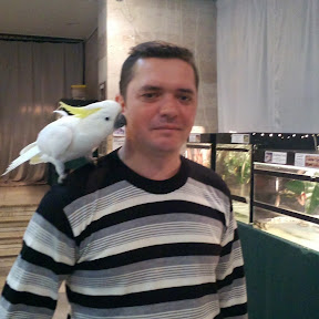 Выставка голубей, г.Мелитополь, 14.10.2017г.