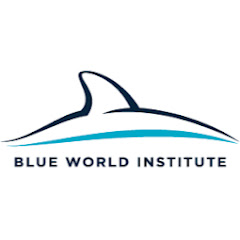 Blue World Institute of Marine Research and Conservation
