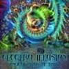 ElectroIllusion