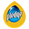 Pledge U.S