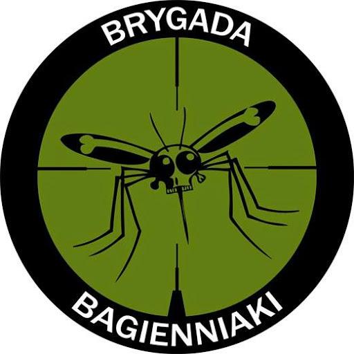 Brygada Bagienniaki