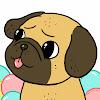 Grover Pug