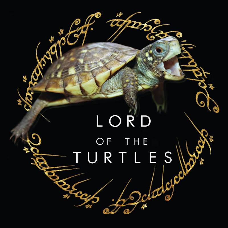youtubeur Lord of the Turtles