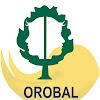 Asociación De Padres De Disminuidos Físicos Y Psiquicos Orobal