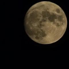 ChaseRadical