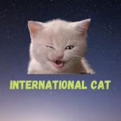 International Cat