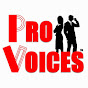 TheProVoices