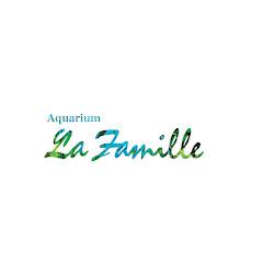 Aquarium La Famille (株式会社アクア環境システムTOJO認定水景デザイナー)