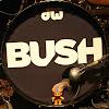 BushOfficial