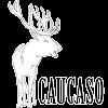 CaucasoFactory