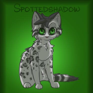 Spotedshadow