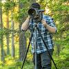 Daniel Nordgren - Naturfotograf