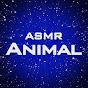 my Animal ASMR - Hamster & Tortoise