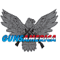 GunsAmerica