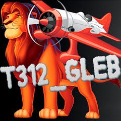Аватар t312_Gleb