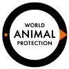 World Animal Protection Latinoamérica