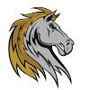 Saugerties Stallions