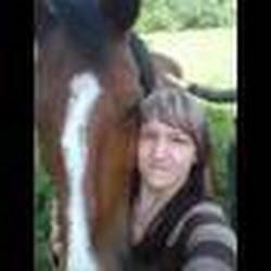 horsefreak2311
