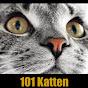 101Katten