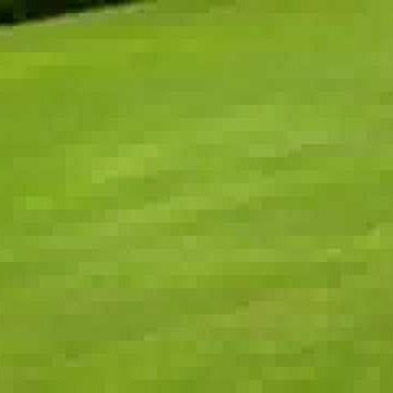 tornlundas