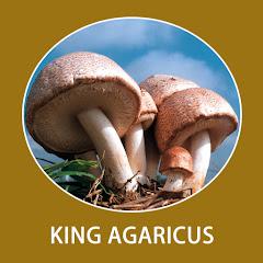 アガリクスの王様・東栄新薬のキングアガリクス
