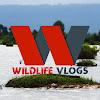 Wildlife Vlogs