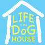 Life in the Dog House