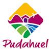 PUDAHUEL TV