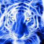 tigera7bab1