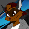 Raiden Raccoon