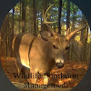 Wildlife Dominion Management