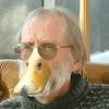 Donald Duckman
