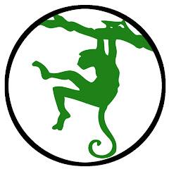 Zielona Małpa