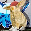 Bunny Swag