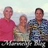 MarineLifeBlog