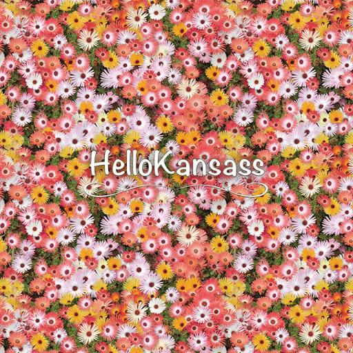 HelloKansass