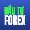 Đầu tư - Kinh doanh Vàng & Forex tại Việt Nam