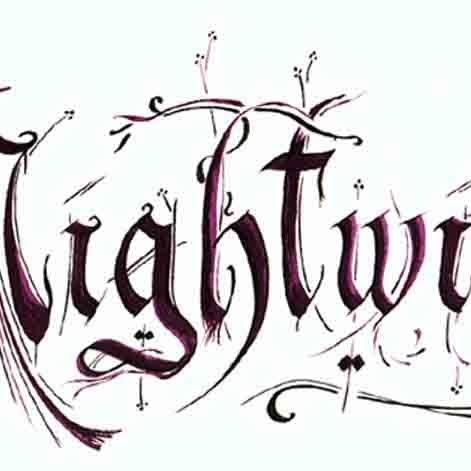 NightFury266