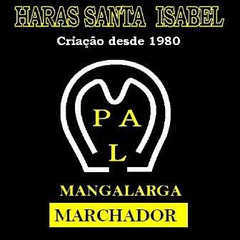 PAL011980