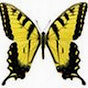 yellowbutterfly59