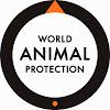 World Animal Protection NZ