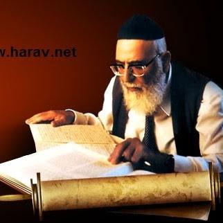 Harav Net