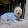 kawwaiGIRLY #puppydogs