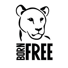 Born Free Foundation