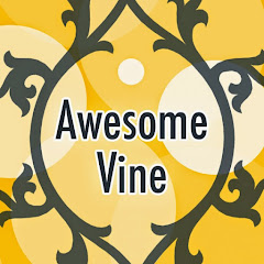 Download Youtube: Awesome Vine
