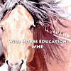 WildHorseEducation