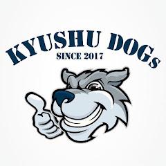 DOGs九州