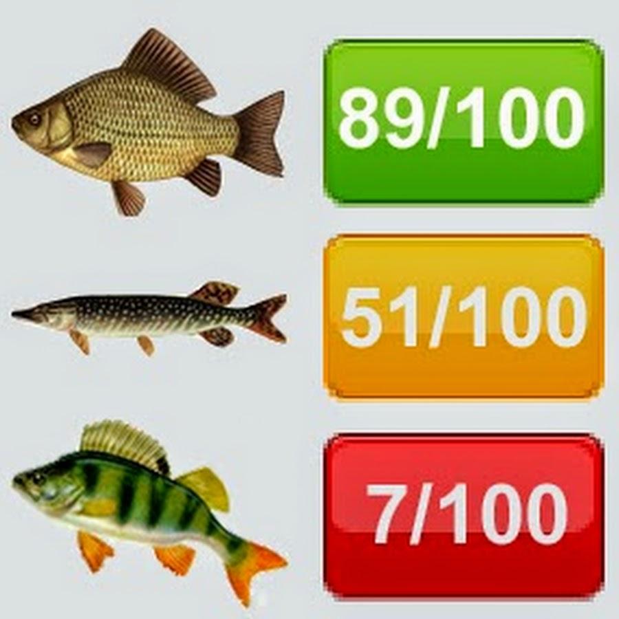 ромны рыбалка прогноз клева
