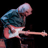 Albert Lee Official